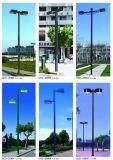 高い明るさの高い発電多くのきれいな形LEDの庭ライト