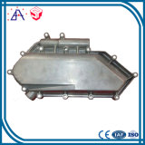 High Precision OEM Custom Zinc Alloy Die Casting (SYD0079)