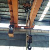 De dubbele LuchtKraan van de Balk met de Elektrische Opheffende Machines van het Hijstoestel
