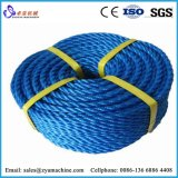 Pet/PP/PE Seil-Heizfaden-Einzelheizfaden-Produktionszweig