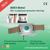 Bd03 de Machine van het Vermageringsdieet van Cryopad Lipo van het Privé-gebruik