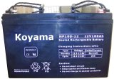 Bateria acidificada ao chumbo selada 12V100AH (NP100-12)
