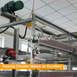 Система клетки цыпленка оборудований птицефермы