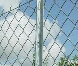최신 판매는, 강철 T 포스트, Y 말뚝 별 말뚝 T 경계를 표시한다