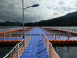 Het plastic Drijvende Platform van het Ponton