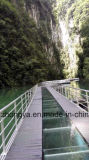 Puente pontón flotante de la calzada