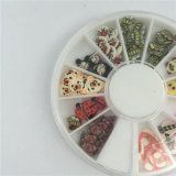 Manufactory voor Klei Fimo Decoratie van de Kunst van de Spijker van de Dieren DIY van de Bloemen van het Fruit van 3 Reeksen 3D