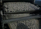E Belt Secadora de briquetas de carbón secado