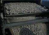 Noi Manufacture Belt Dryer per Coal Briquette Drying