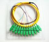 Smの光ファイバ束のピグテール(コネクターSC APC 12のコアマルチコアジャンパー)