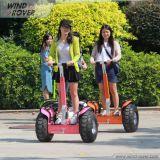 Viento Rover eléctrico Segway Vehículo para adultos
