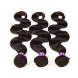 Grad 7A Body Wave Mink brasilianisches Hair Wholesale