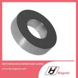 Magnete permanente personalizzato del neodimio dell'anello NdFeB/di potere eccellente N35 N52 per i motori