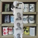 画像の洗面所は表面によって印刷されるトイレットペーパーのおかしいトイレットペーパーを拭く
