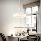 Luz do indicador de louro do diodo emissor de luz, lâmpada decorativa do pendente