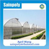 販売のための低価格の農業の温室