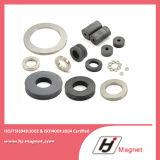 Anello personalizzato magnete permanente neodimio/di NdFeB di potere eccellente N35 N38 per il motore di industria