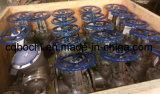 바다 ANSI 표준 주철강 게이트 밸브
