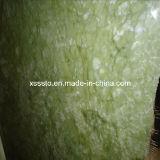 Grüne Marmorplatten China-Dangdong für Wand und Floooring