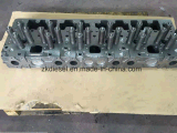 De Cilinderkop van Cummins Assy M11 voor Dieselmotor