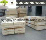 tarjeta de la madera contrachapada del LVL del álamo de la alta calidad de 18m m con la mejor calidad