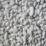 安い価格の大きい洗浄された石の小石の石