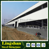 Edificios de acero chinos de la estructura de acero del surtidor ASTM A572 Peb