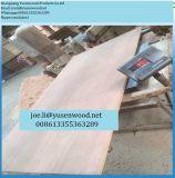 madera contrachapada del envase de 1160*2400*28m m, madera contrachapada del suelo del envase de Apitong