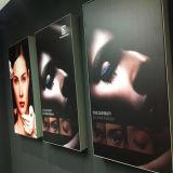 An der Wand befestigter bekanntmachender heller Kasten des Bildschirmanzeige-Gewebe-LED