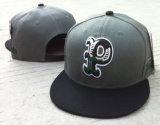 3D刺繍の平らな縁の急な回復の帽子