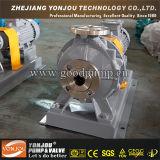 Lqry Serien-thermische kochendes Schmieröl-Hochtemperaturpumpe