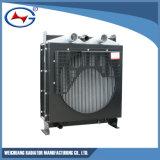 R6110zld-20: Radiatore dell'acqua per il gruppo elettrogeno di Weichai