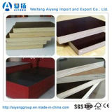 1220mm*2440mm Film Faced Plywood voor Construction