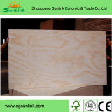 Madera contrachapada de madera dura chino para muebles