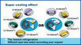 Большинств эффективное интенсивное оборудование красотки IPL удаления волос света ИМПа ульс