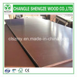 Тополь Core Brown Film 4X8 Feet Film Faced Plywood