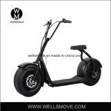 800W 48V de Vette Autoped van de Mobiliteit van de Band met Dubbele Seater