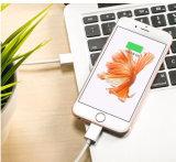Cabo do USB da potência & dos dados, cabo magnético do USB para o iPhone