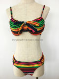Фотоие Swimwear девушки молодого Swimsuit сексуальные Xxx Бикини способа нашивки