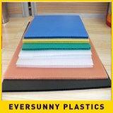 Лист /Corrugate PP полый и твердый пластичный лист