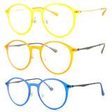 Het populaire Optische Frame van het Oogglas Ultem Plastic Eyewear met Slank Roestvrij staal B7051