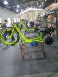 狂気の極度な三輪車の三輪車をする漂う練習のTrikesの催し物