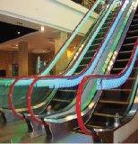 O OEM presta serviços de manutenção à escada rolante 30degree com o certificado do Ce para a alameda de compra