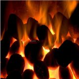 低価格の石炭および木炭煉炭の機械または木炭球の出版物機械