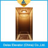 Elevatore domestico residenziale Dkv400 della villa del passeggero di stile LMR della fascia d'acciaio
