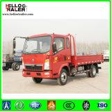 HOWO 10 camion chiaro del veicolo leggero 4X2 Catgo di tonnellata da vendere