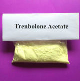 Dunkles gelbes rohes Steroid-Puder Trenbolone Enanthate mit HPLC Report