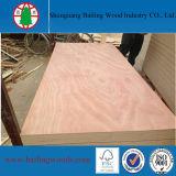 Madera contrachapada comercial del álamo de Shandong 18m m para los muebles