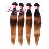 Горячее популярное самое лучшее продавая чисто волос Ombre людские индийские
