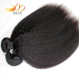 ねじれたまっすぐで自然な毛の拡張を編む加工されていないベトナムのバージンの毛